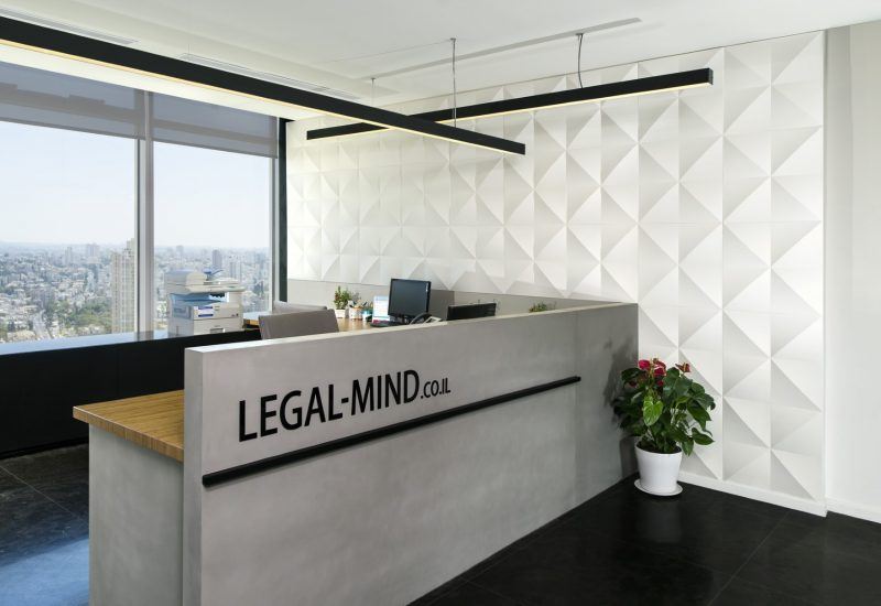 Legal-Mind - 01